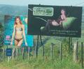 Lingerie billboards