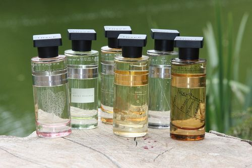 Ineke fragrances