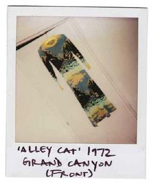 Polaroid of a dress