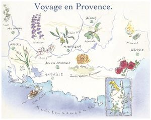 Loccitane illustrated provence map