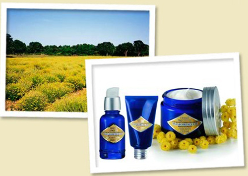 Loccitane immortelle natural skincare skin care