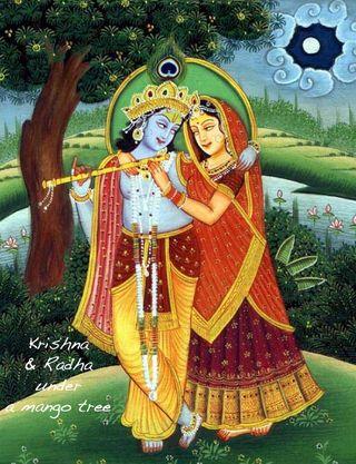 Mango tree krishna radha