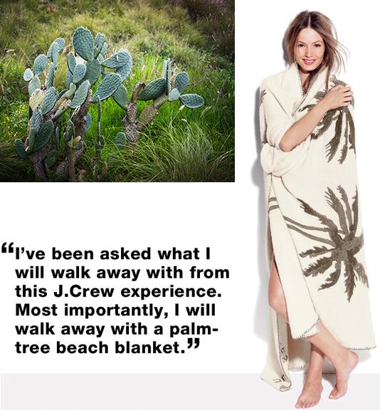 Elder statesman j crew tree blanket