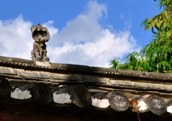 Yunnan tile cat roof