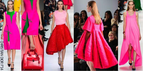Dior fall 2014 1
