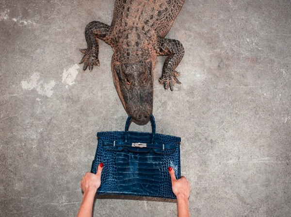 Ethical fashion alligator crocodile hermes birkin bag