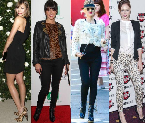 Celebrities leopard fashion shoes accessories