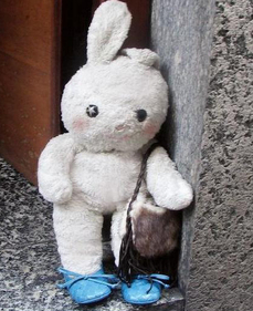 Star von Bunny
