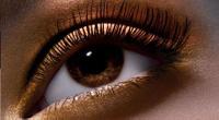 Glamorous eyeshadow eyelashes