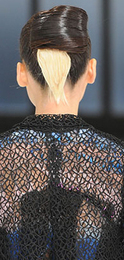 Rodarte_hair_fall_2008_2