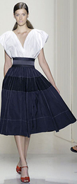 Donna karan navy full skirt spring 2008