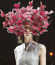 runway fashion accessories butterflies cocktail Hat alexander mcqueen