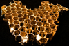 Gold_honeycomb_derrick_cruz