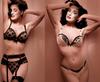 Dita_von_teese_lingerie_2