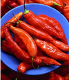 Chili_pepper_red_pantone_191557