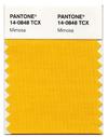 Pantone_mimosa_yellow