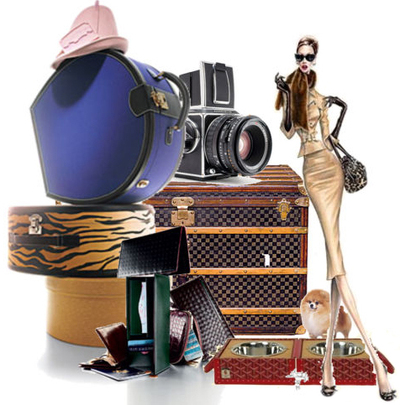 Stylish_luggage_travel_fashion_2
