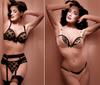 Dita_von_teese_lingerie