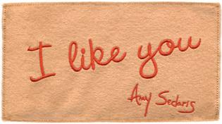 Amy_sedaris_pastry_pouch_2