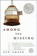 Books_among_the_missing