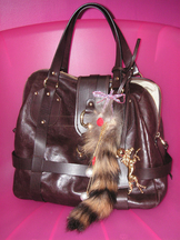 Interpretation_rachels_bag_3