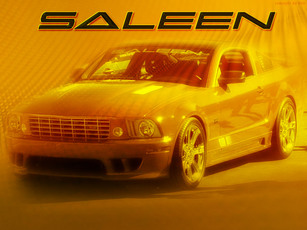 Ltd_ed_saleen_mustang_2