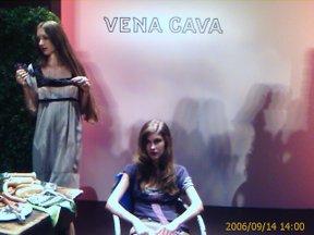 V_cava_3