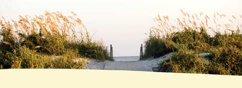 Wild_dunes